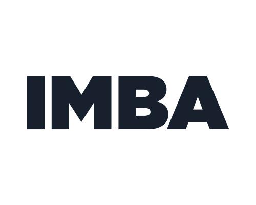 IMBA — образовательная академия цифрового бизнеса Ingate