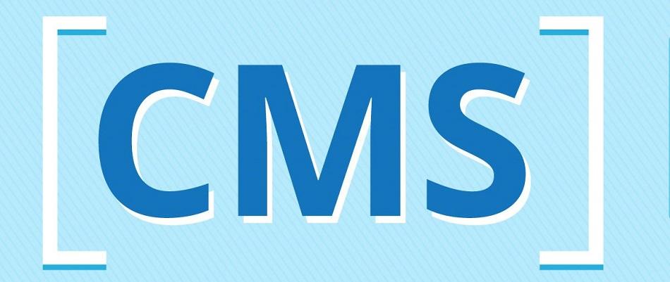 Самописная или готовая CMS